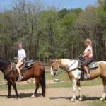 Ladies on Horses