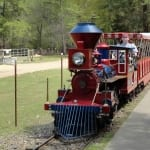 Train in the Park